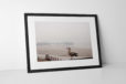 Blackpool Seagull Photographic Print In Black Frame