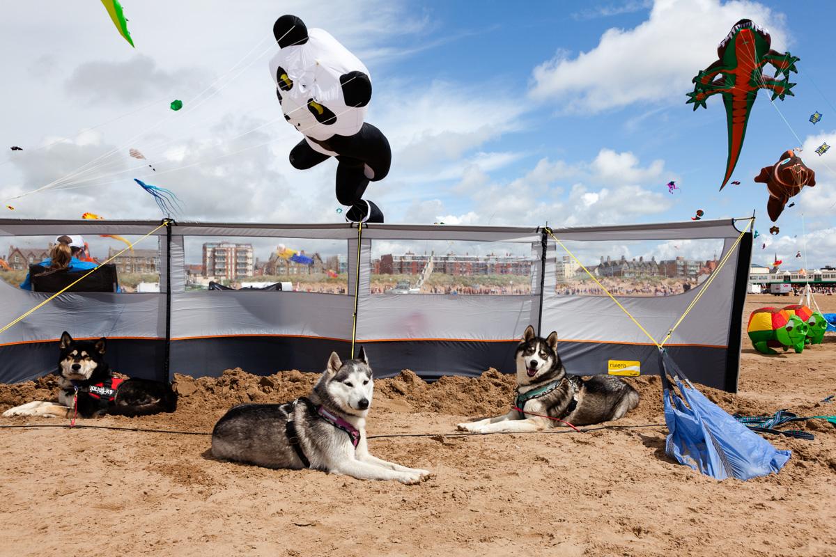 St Annes Kite Festival 2014 - Photography By Yannick Dixon