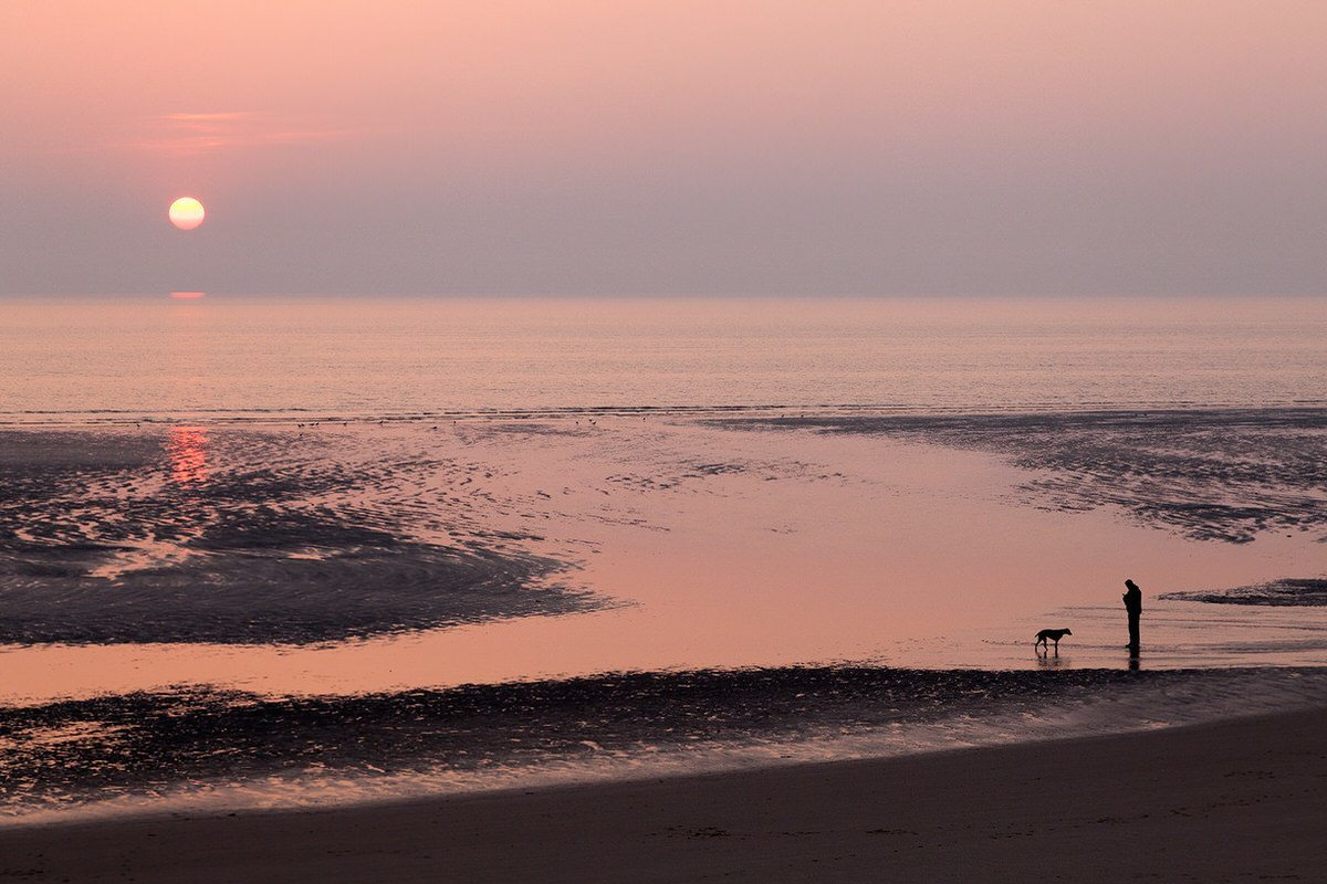 One Man And His Dog At Sunset In Blackpool