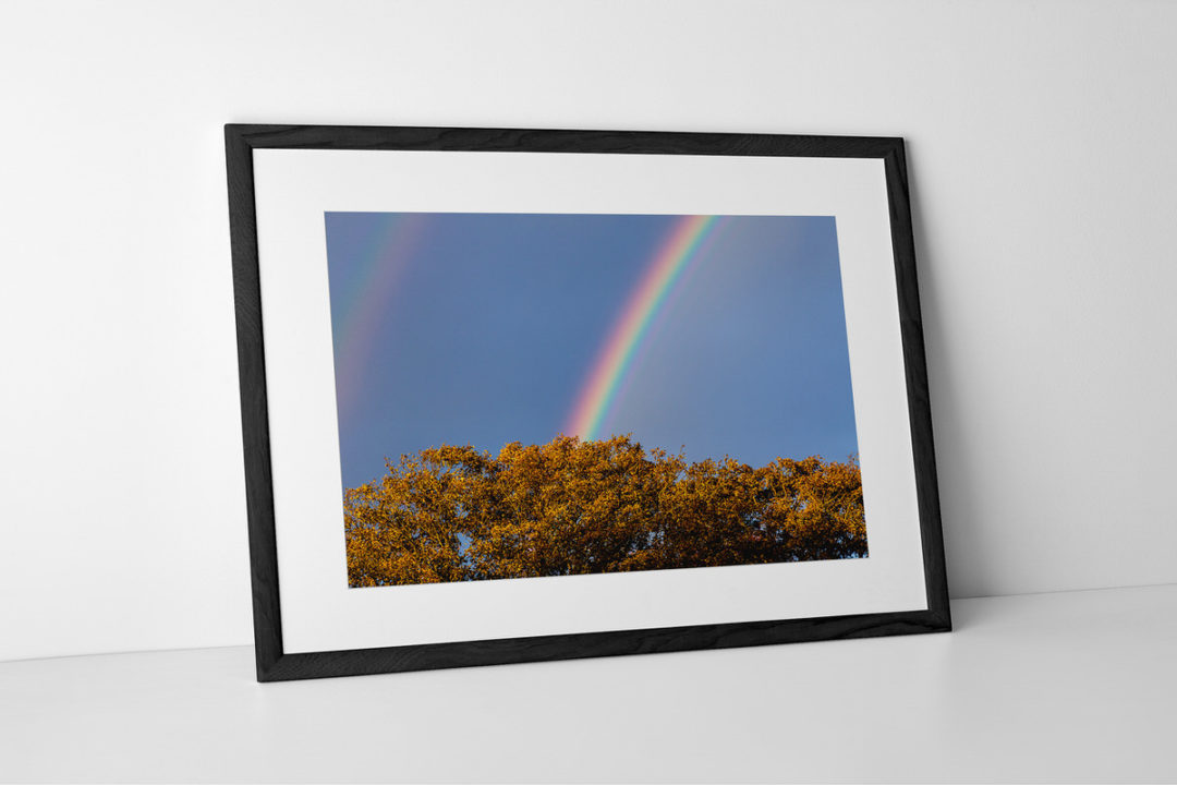 Rainbow Photographic Print In Black Frame By Yannick Dixon