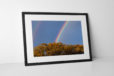 Rainbow Photographic Print In Black Frame