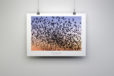 Counting Starlings Print By Yannick Dixon