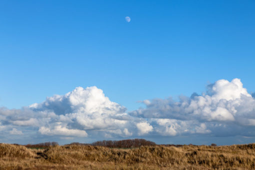 Mid-Afternoon Gibbous Moon By Yannick Dixon
